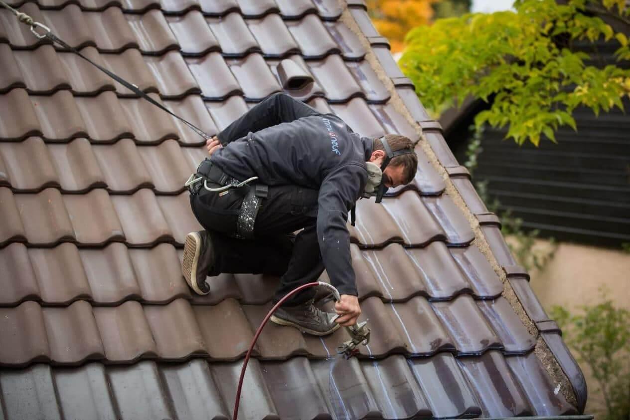 entreprise nettoyage toiture 91